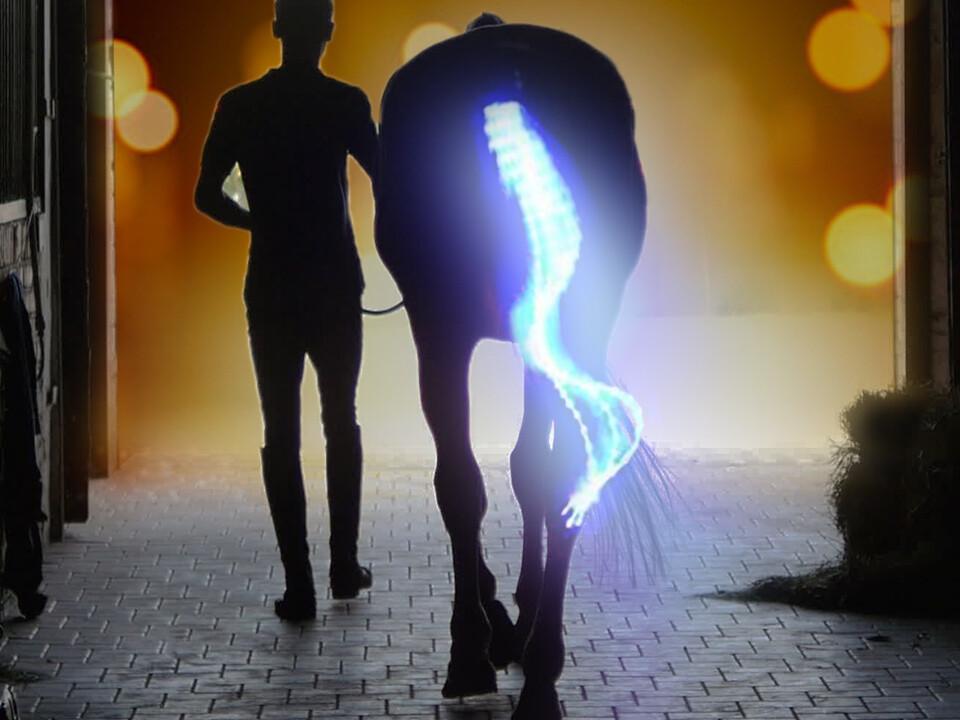 LED-Schweifbeleuchtung Long 2.0