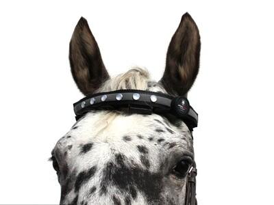 Leucht-Stirnband Vers. 2.0