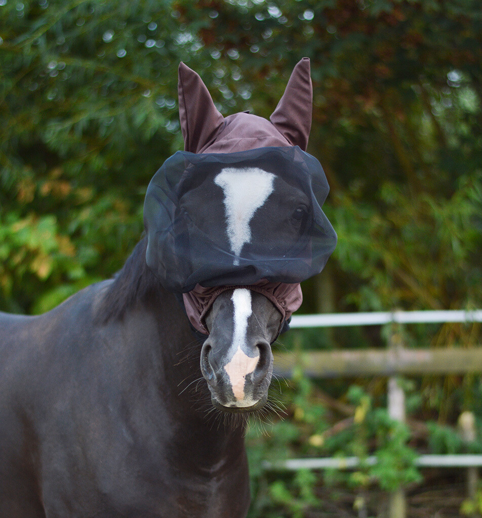 Ekzem-Maske mit Ohren