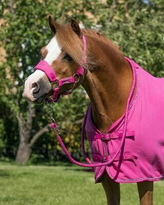 Halfterset Pegasus