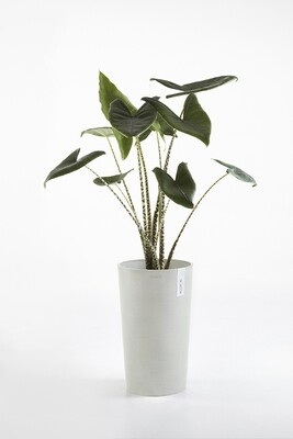 Ecopots Amsterdam Mid High White Grey