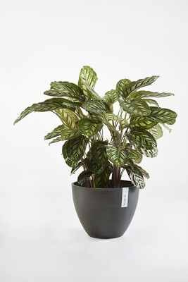 Ecopots Antwerp 30 Dark Grey