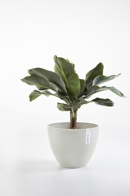 Ecopots Antwerp 50 White Grey