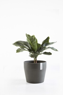 Ecopots Sankara 40 Dark Grey