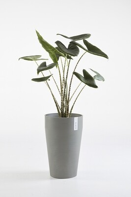 Ecopots Sankara Mid High Blue Grey
