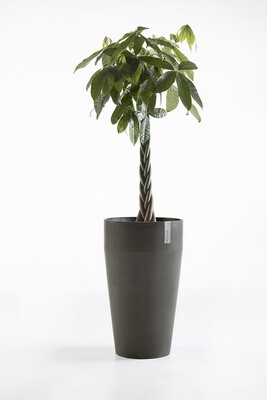 Ecopots Sankara High Dark Grey
