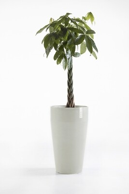 Ecopots Sankara High White Grey