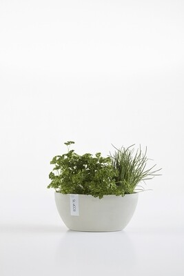 Ecopots Sofia 30 White Grey