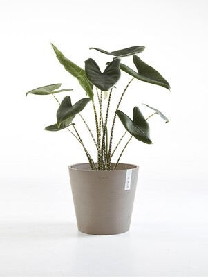 Ecopots Amsterdam 30 Taupe
