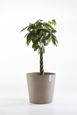 Ecopots Amsterdam 60 Taupe