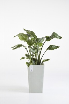 Ecopots Rotterdam Mid High White Grey