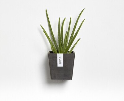 Ecopots Manhattan Wall S 15 Dark Grey