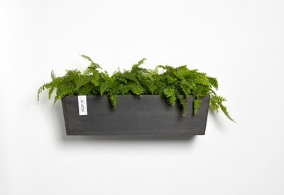 Ecopots Manhattan Wall L 55 Dark Grey