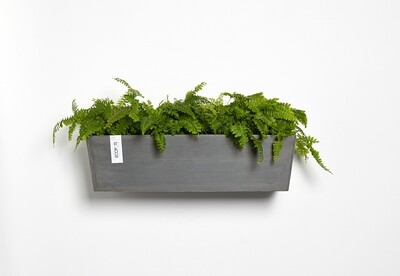 Ecopots Manhattan Wall L 55 Grey