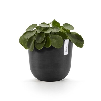 Ecopots Oslo 25 Dark Grey + water reservoir