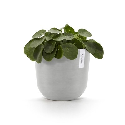 Ecopots Oslo 25 White Grey + water reservoir