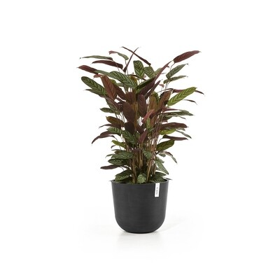 Ecopots Oslo 35 Dark Grey