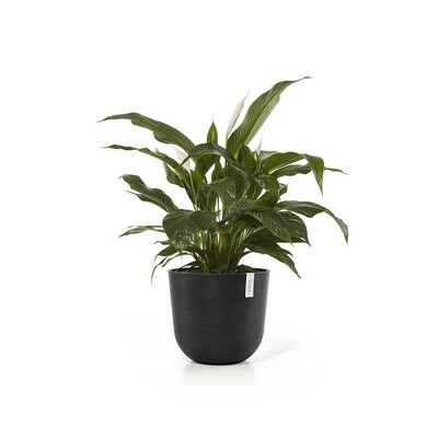 Ecopots Oslo 45 Dark Grey