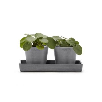 Ecopots Display Platter Amsterdam Mini 20 Grey