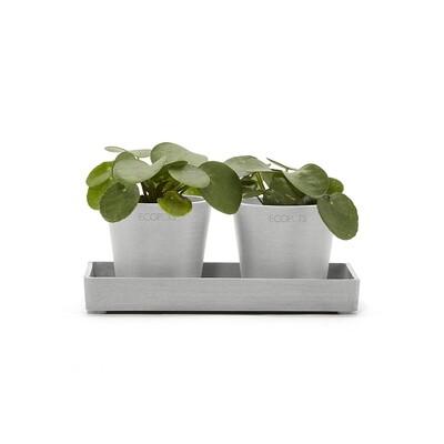 Ecopots Display Platter Amsterdam Mini 20 White Grey