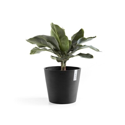 Ecopots Amsterdam 40 Dark Grey + water reservoir