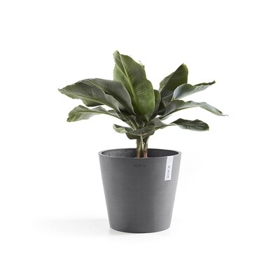 Ecopots Amsterdam 40 Grey + water reservoir