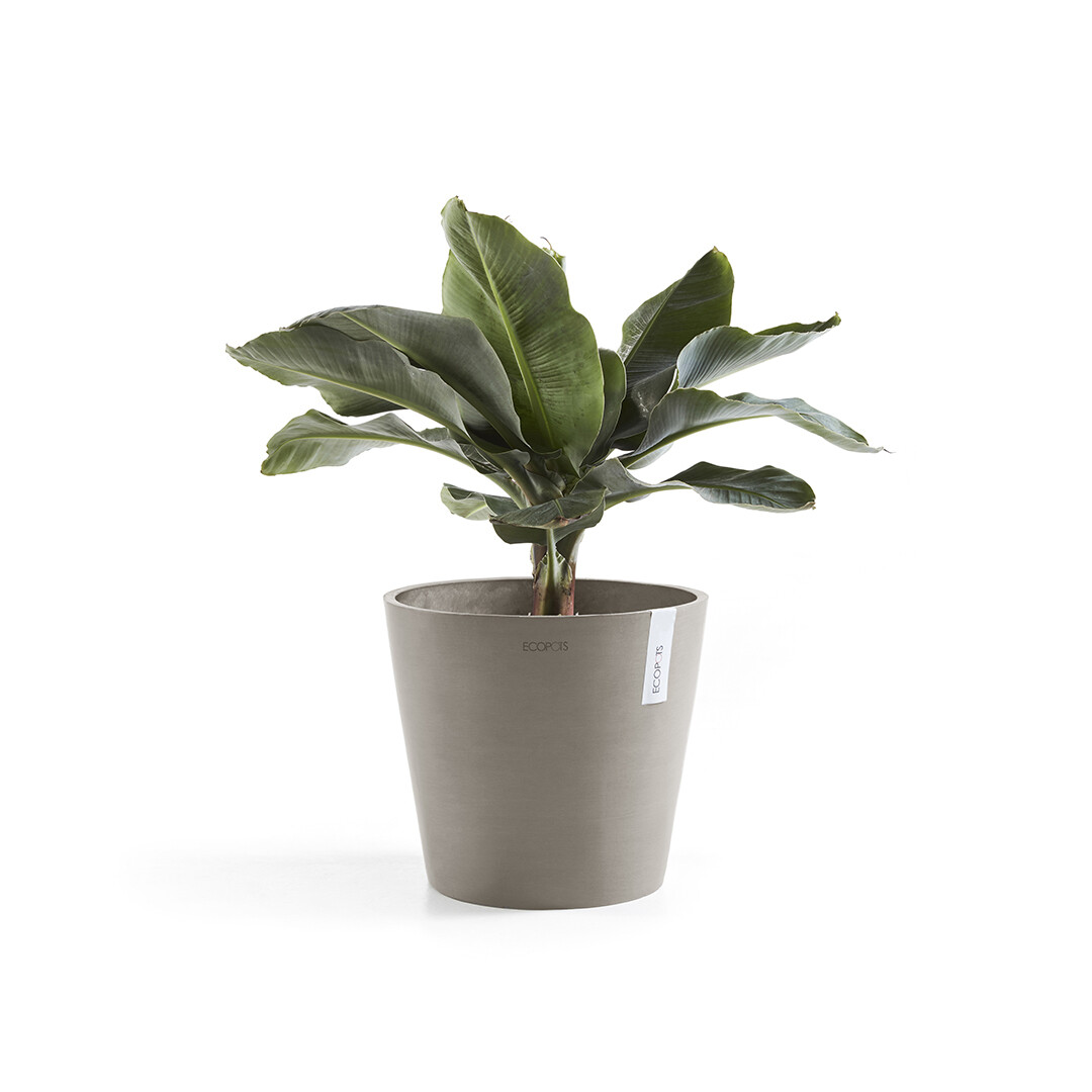 Ecopots Amsterdam 40 Taupe + water reservoir