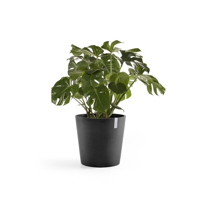 Ecopots Amsterdam 50 Dark Grey + water reservoir