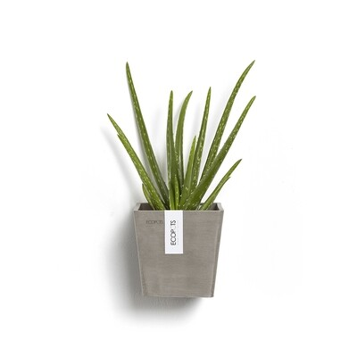 Ecopots Manhattan Wall S 15 Taupe