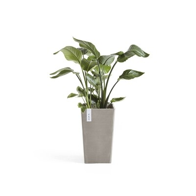 Ecopots Rotterdam Mid High 50 Taupe