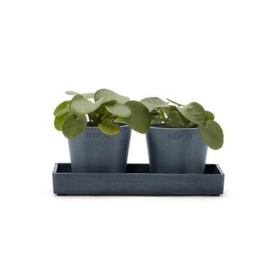 Ecopots Display Platter Amsterdam Mini 20 Dark Blue