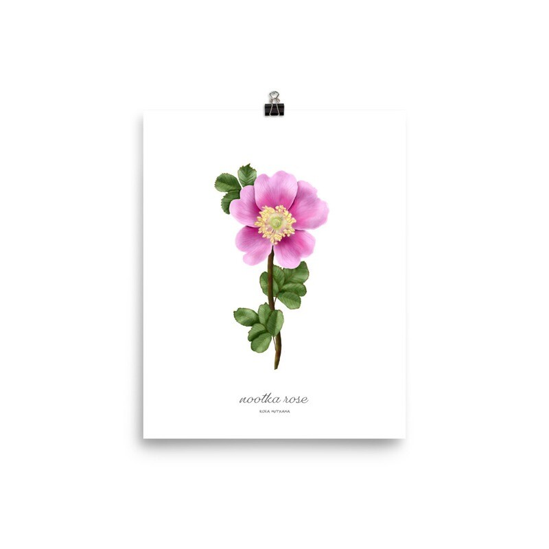 Nookta Rose Print, Titled