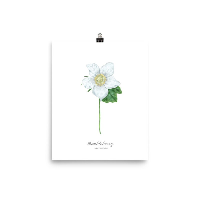 Thimbleberry Print, Titled