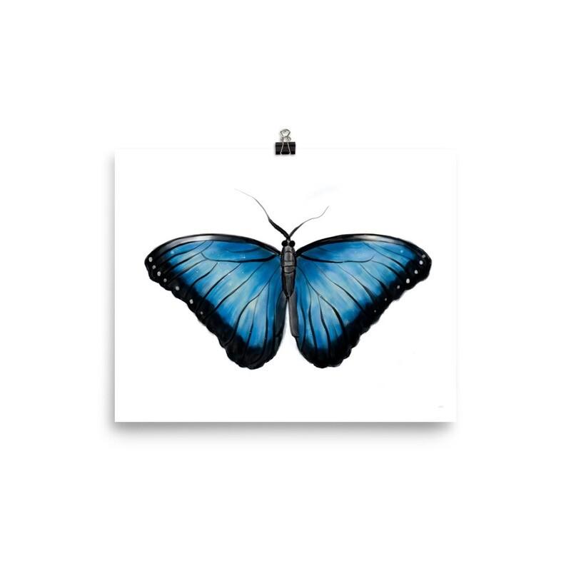Blue Butterfly, Morpho Peleides, Print