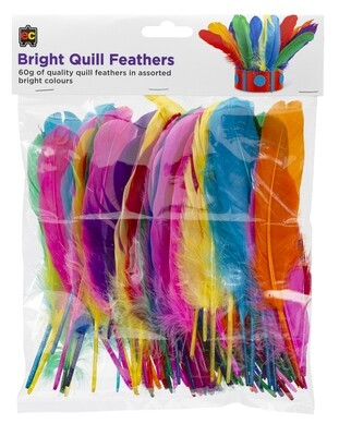 Quill Feathers Brights 60g