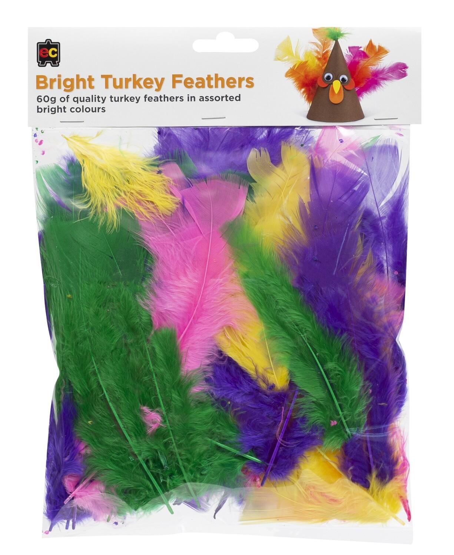 Turkey Feathers Bright 60g