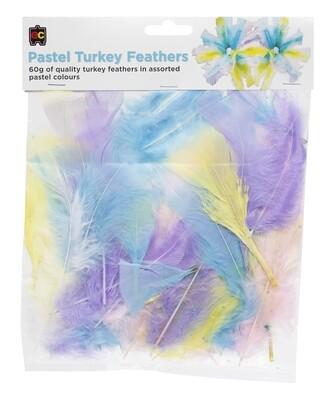 Turkey Feathers Pastel 60g