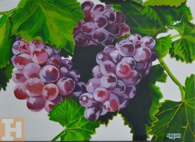 Grapes:- Acrylics on Canvas Panel 30.5cmx40.6cm