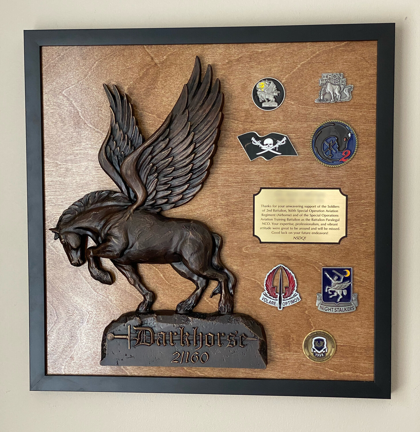 "2-160th Plaque - 20""x20"""