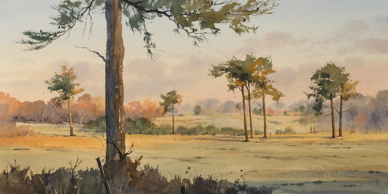 Scots Pines, near Chelwood Vachery
