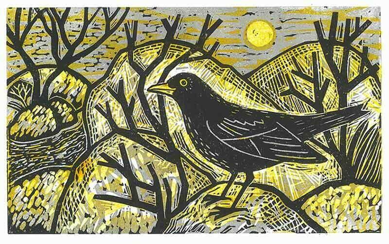 Blackbird in Japanese garden (morning)