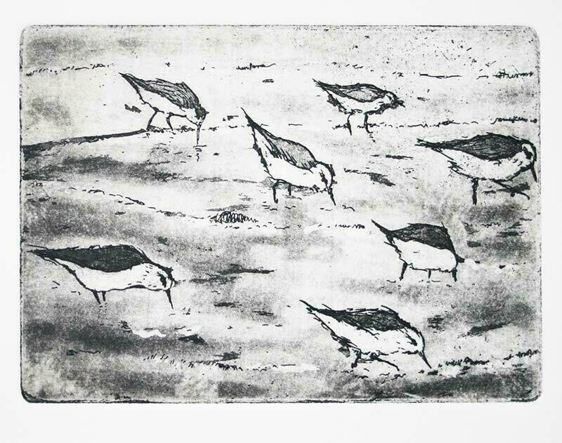 Birds on a Beach
