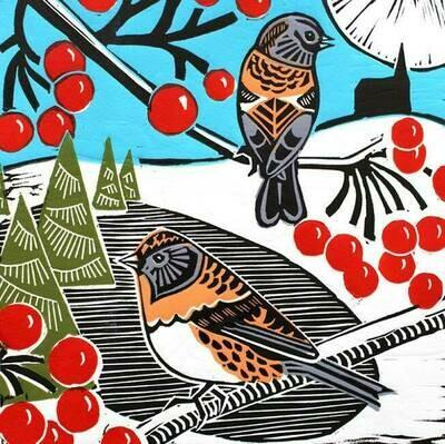 Bramblings and Berries