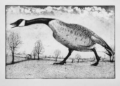 Hissing Goose