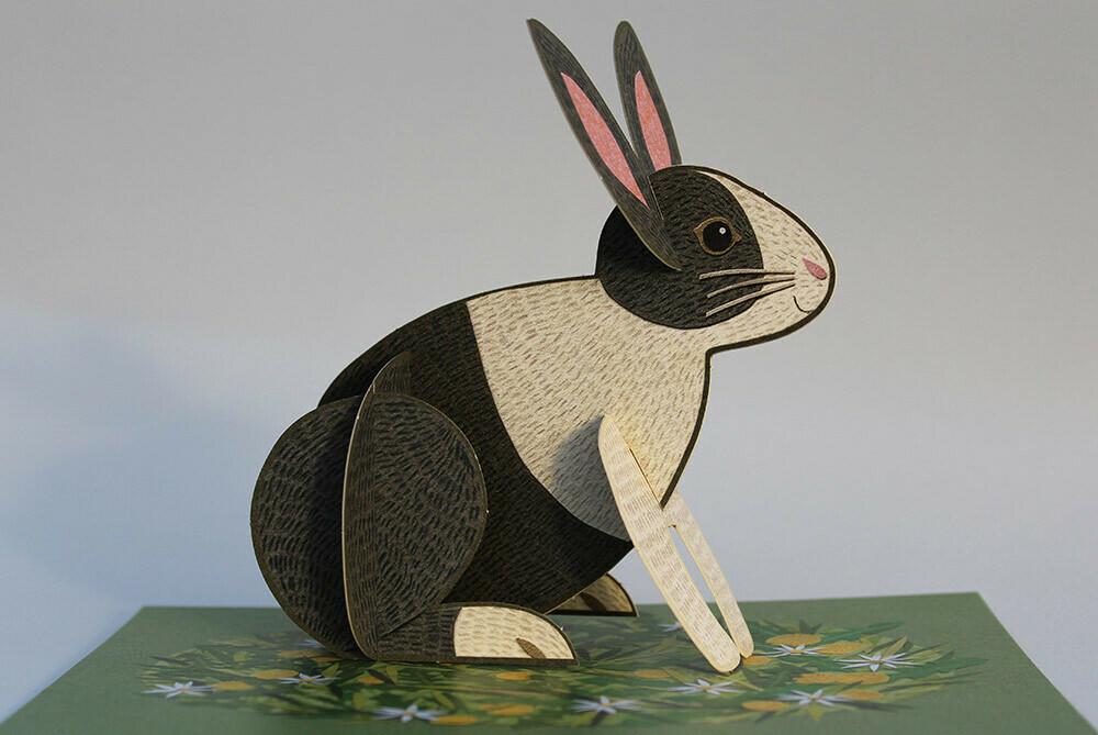 Pop out Pets  - 3D Bunny  Card
