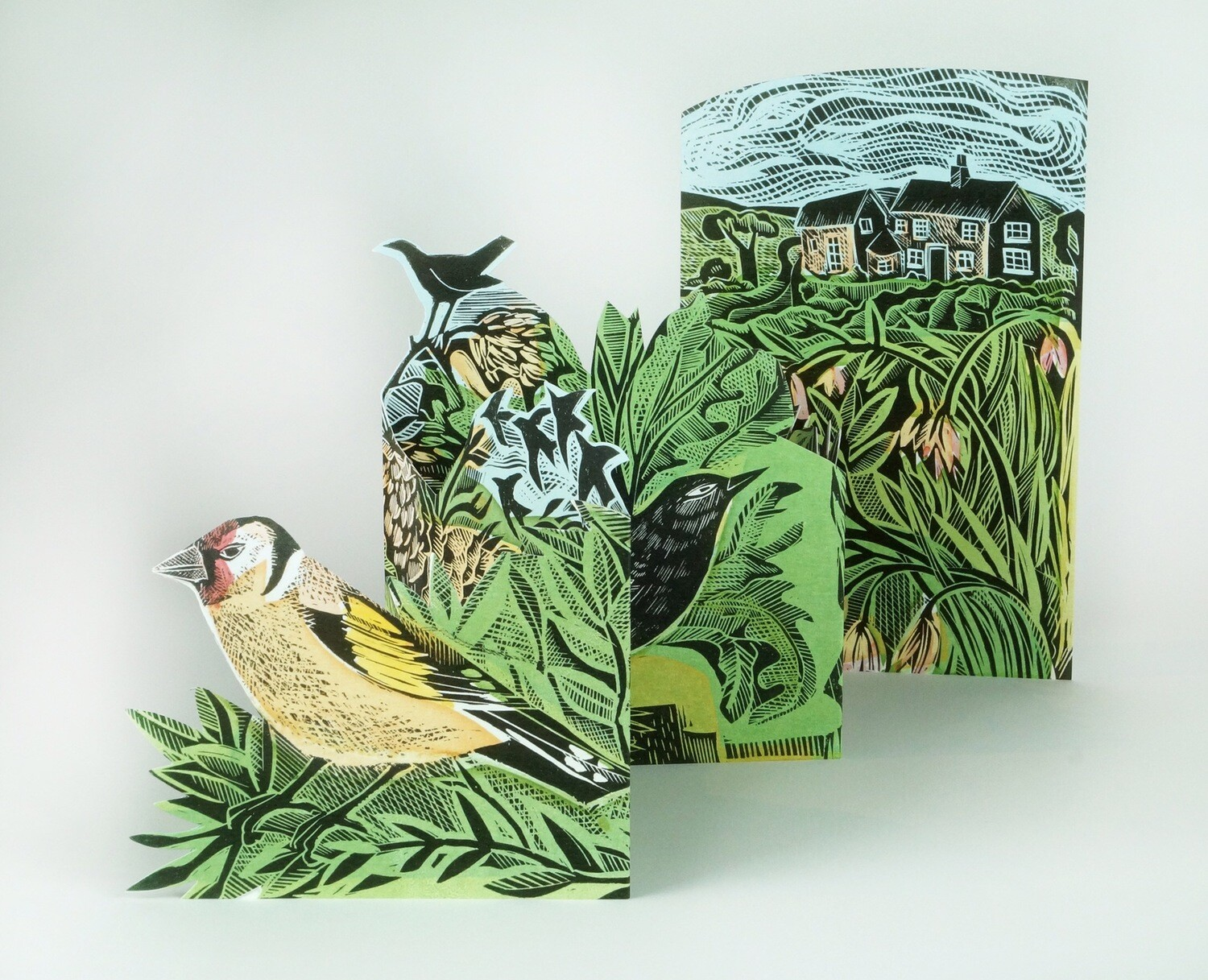 Garden Birds Concertina Card