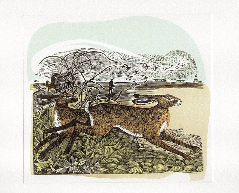 Hares at Orford Ness- Printmakers Card