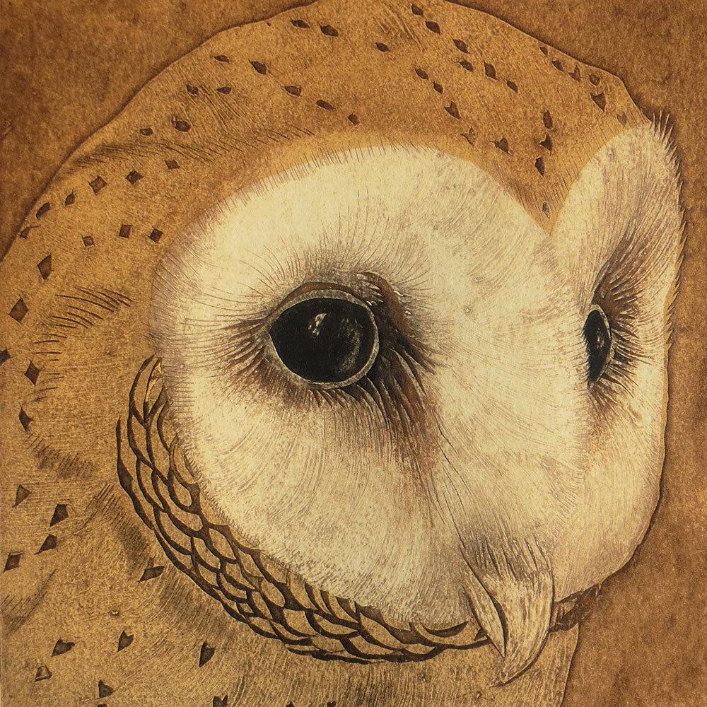 Barn Owl  -Printmakers Card