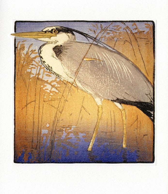 Heron- Printmakers Card