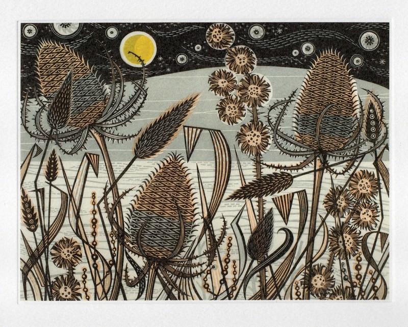 Lakeside Teasels - Printmakers Card